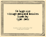 vintage polaroid brushes by withmycamera