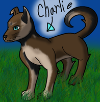 Charlie the Puppy by I-Major-In-Magick