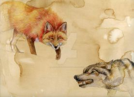 Redfox, Graywolf by the-crazy-painter