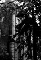 University of Alberta- two by unknown-nobody