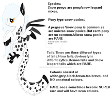 Snow Pony species ref (ORIGINAL) by S-n-o-w-Leopard