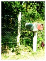Waiting for that Letter by Little-Miss-Amarie