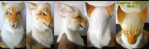 Flame Point Oriental Cat by Magpieb0nes
