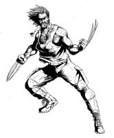 wolverine black and white by thorup