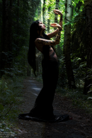 Sombre forest by DianaSimon