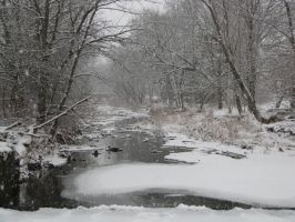 Pleasant Run Springs Winter 3 by wax-wing