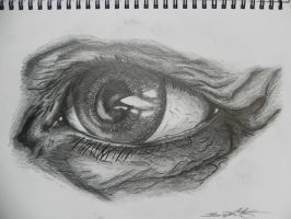 study of an eye by Br00dley