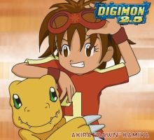 Best Partner: Dawn and Agumon by CherrygirlUK19