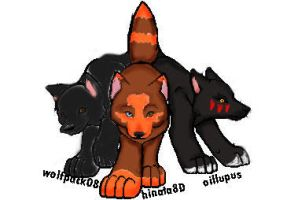 some of my pack by hinata8D