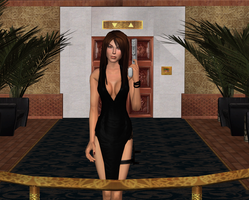 Partycrasher 4 by tombraider4ever