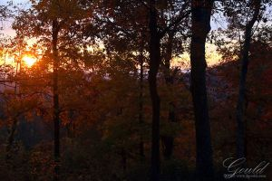 Sunrise In The Fall by ThisWomanWanders