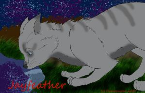 Jayfeather and the Moonpool by Phantomstar-wolf7