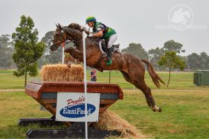 Some wet XC action!! by EquusAustralia