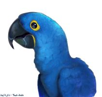 Blue Parrot by That-Dodo