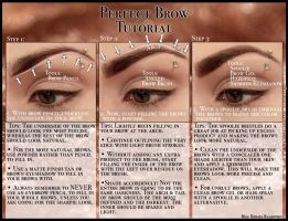 Perfect Brow Tutorial by psychoren