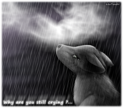 . : Why are you still crying ? : . by LeaTenshi