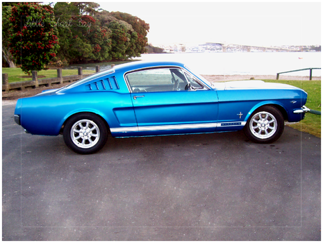 Mustang Fastback by katie000