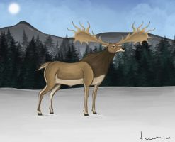 Irish Elk by Louisetheanimator