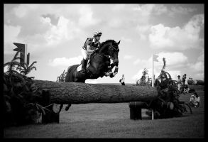 Barbury Cross Country by TheFurryGoldfish