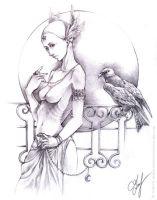 Swan and kite by Andette