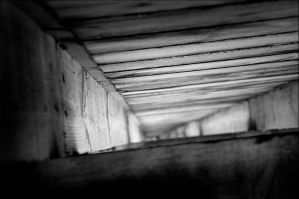 Wooden Tunnel by eGregory