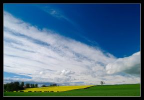 Field of Clouds 1 by MessiahKhan