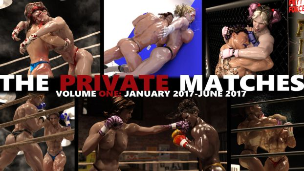 The Private Matches: Vol. 1 Now on Sale! by AFCombat