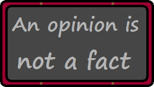 An Opinion Is Not A Fact by Thiamor