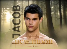 Jacob New Moon Poster by carloscullen