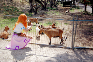 Malon with the goats by arukafox