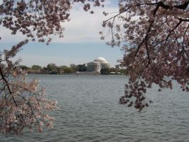 Jefferson Memorial by Tuftless