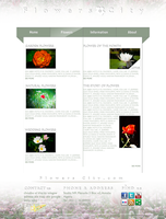 Web interface Flowers city by drouch