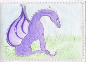 Purple Leatherd Skin Dragon by Lulabys-Melody
