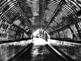 Greenway Tunnel by alimuse