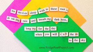 The Daily Magnet #243 by FridgePoetProject