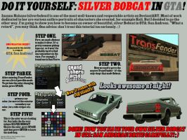 Do It Yourself: Silver Bobcat. by TRWA
