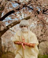 Ja'far Cherry Blossoms by Ace5262