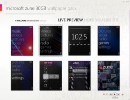 Microsoft Zune 30GB Wallpack by srjames