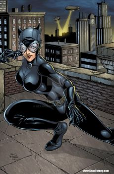 Catwoman colors by seanforney