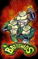 Battletoads Commission by mainasha