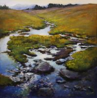 Meadow Creek by artistwilder