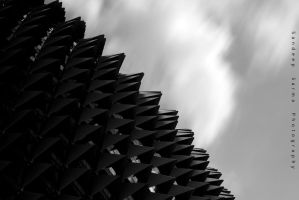 the durian by sandeepsarma