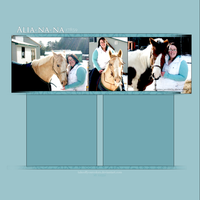 hp layout two by takeoffyourcolors