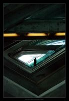The Passenger by Evilien