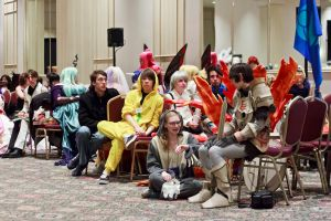 Anime North 2013: Journalistic shot 80 by Henrickson