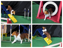 Breyer Dogs - Agility Trial by The-Toy-Chest