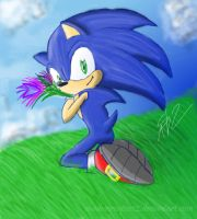 Simple Sonic by ShadowReaper12