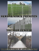 The Iron Fence II by skwonk-stock