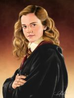 iPad art: Hermione Granger by ShinkenDon