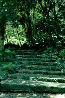 The stairs to eden by nemisis11